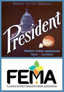 2020 Dfw President Of Fema
