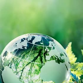 Iofi Sustainability Charter