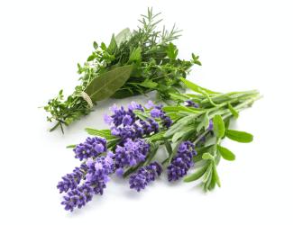 Organic Floral Herb Min