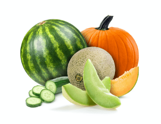 Organic Melon Gourd Min