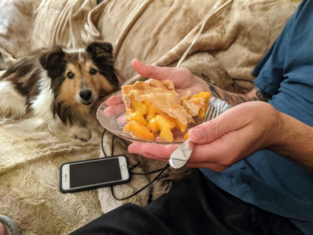 Peach Pie Piece