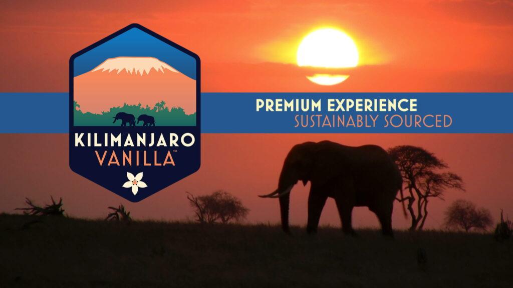 Kilimanjaro Vanilla Featured Image Sunset Elephant 16x9 (1)
