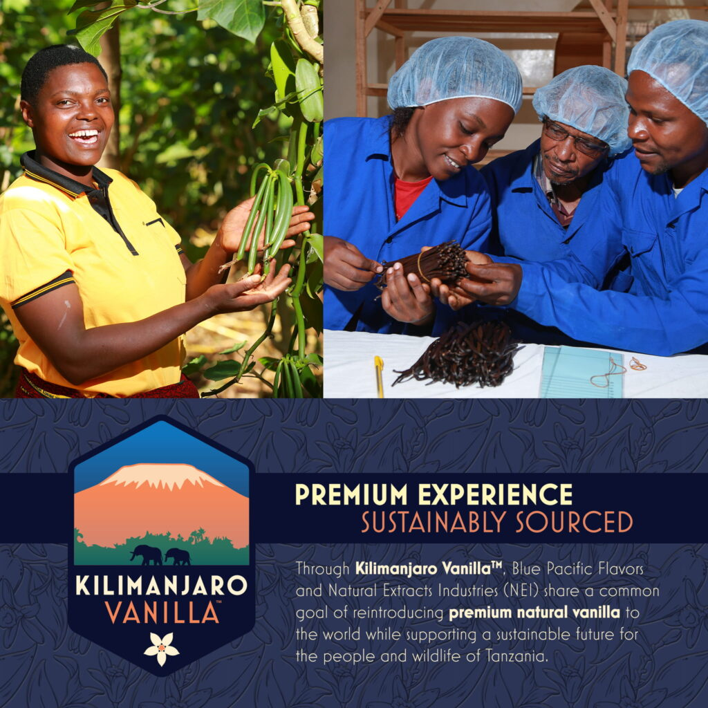 Kilimanjaro Vanilla Mission 1x1