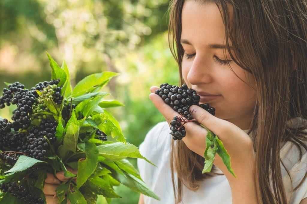Elderberry Aroma