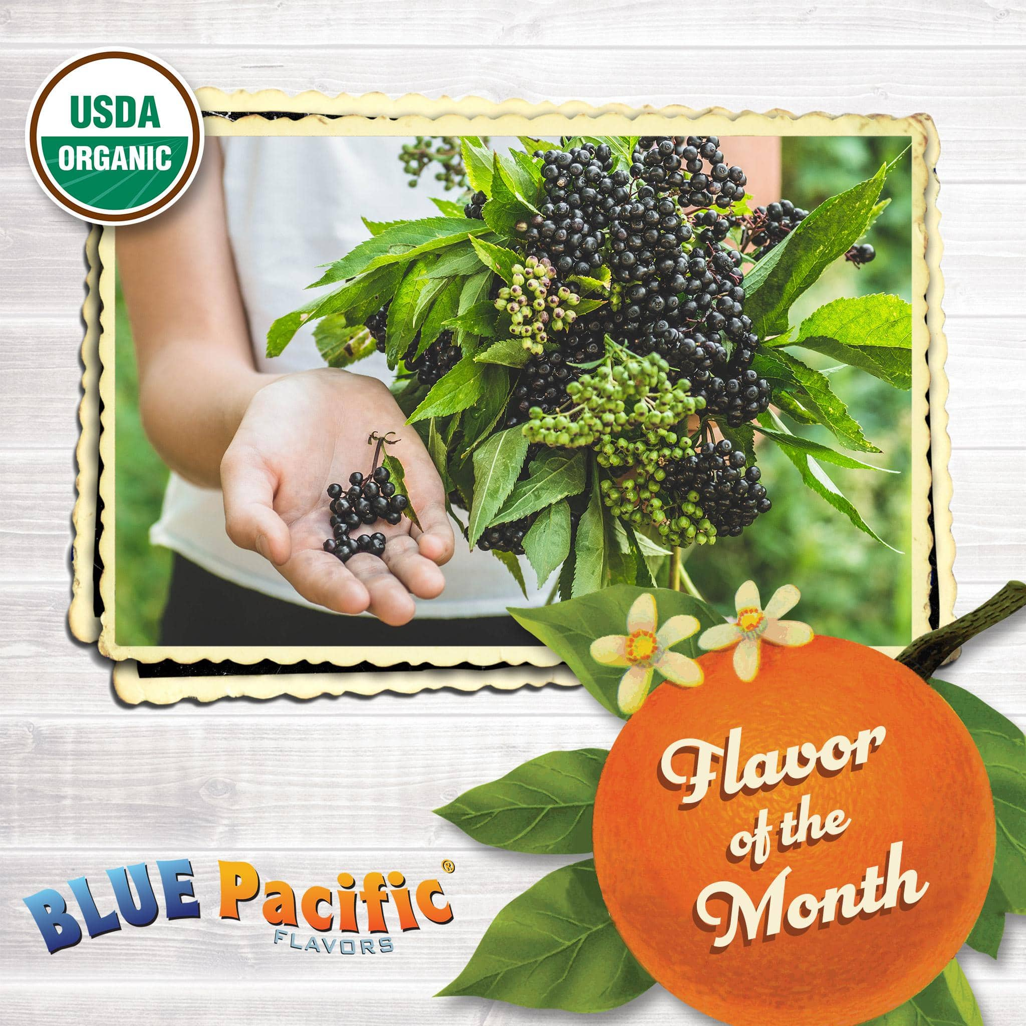 Elderberry Flavor Of The Month