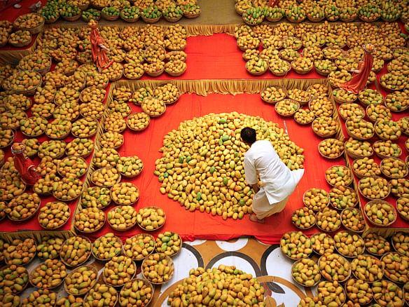 Mangoes Festival